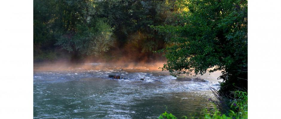 Les rivières